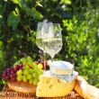 Various sorts of cheese, bread, grapes and two glasses of the wh — Stock Photo
