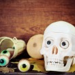 Creepy skull, halloween sweets and pumpkins — Stock Photo
