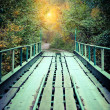 Old bridge in autumn misty park — Stock Photo #31855431