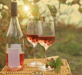Two glasses and bottle of the rose wine in autumn vineyard. — Foto de Stock