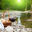 Red wine, cheese and bread served at a picnic — Stock Photo #38666525