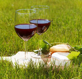 Two glasses of the natural homemade red wine — Stock Photo