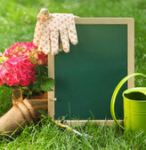 Beautiful spring flowers and blackboard blank on the green grass — Stock Photo