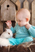Happy little baby girl with a small white rabbit  — Photo