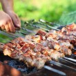 Marinated shashlik, lamb meat grilling on metal skewer, close up — Stock Photo #45396995