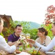 Group of happy friends toasting wine glasses in the garden — Stock Photo #47787459