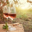 Two glasses of the rose wine in autumn vineyard — Stock Photo #47788247