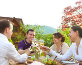 Group of happy friends toasting wine glasses in the garden — Stockfoto