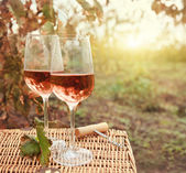 Two glasses of the rose wine in autumn vineyard — Zdjęcie stockowe
