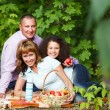 Happy young family on autumn picnic — Stock Photo #51047785
