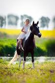 Child riding a horse — Stock Photo
