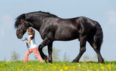 Child and big black horse — Stock Photo