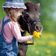 Child with dandelion and horse — Stock Photo