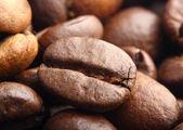 Rosted coffee bean macro estreme girato — Foto Stock