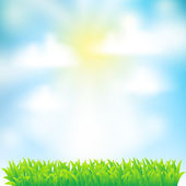 Spring background with grass,sky and clouds — Stock Vector