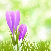 Küçük çiçekler arka plan bahar — Stok Vektör