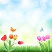 Spring background with grass,tulips and butterflies — Stock Vector