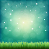 Green grass under the night fantasy sky — Stock Vector