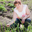 Woman with a sheaf of young onions in her garden — Stock Photo