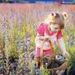 Girl and kitten — Stock Photo #12585887