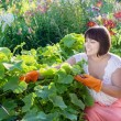 Smiling women in garden — ストック写真