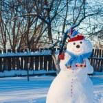 Snowman — Stock Photo #12587639