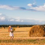 meisje op het veld — Stockfoto