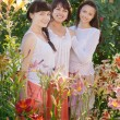 Stock Photo: Womans in garden