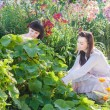 Two Woman Planting In a Garden — Stock fotografie