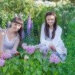 Stock Photo: Two Woman Planting In a Garden