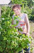 Glimlach meisje in tuin — Stockfoto