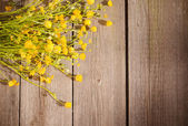 Yellow flowers on wooden background — Стоковое фото