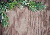 Bladeren op de oude houten achtergrond — Stockfoto