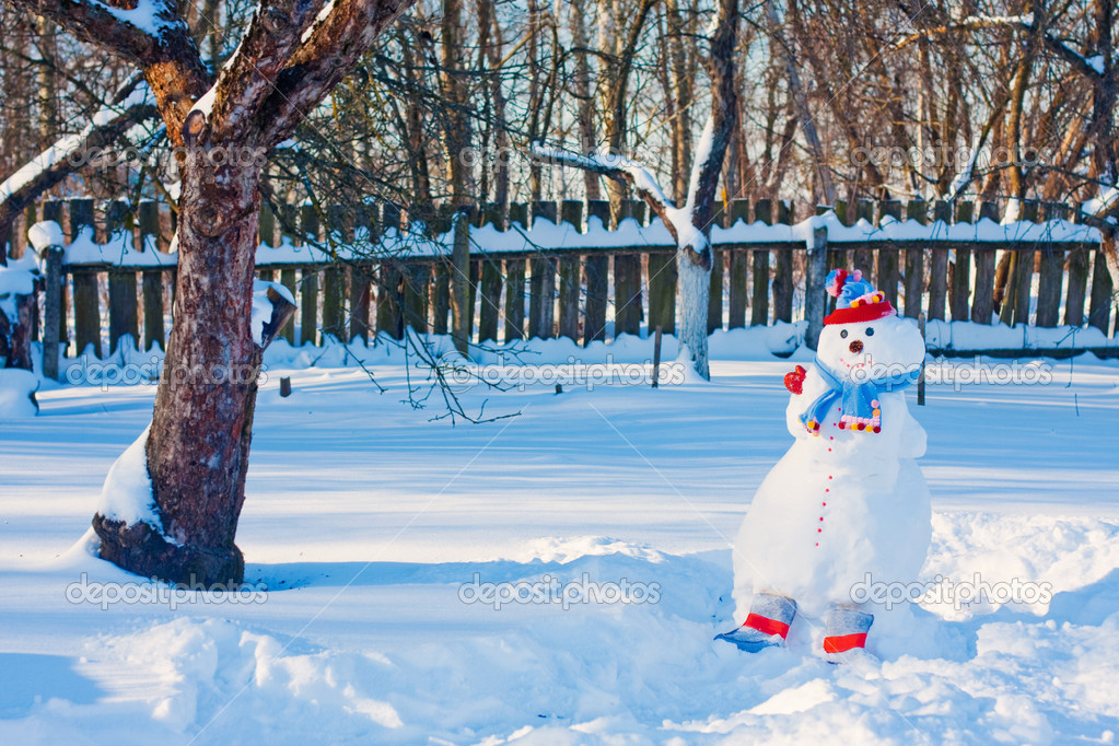 Snowman  Stock Photo #12587696