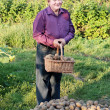 Old men with potatoes — Stock Photo #20534743