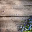 Spring flowers on wooden background — Stock Photo #21335855