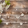 Spring flowers on wooden background — Zdjęcie stockowe #21336355