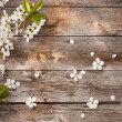 Spring flowers on wooden background — Stock Photo #21336355