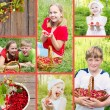 Collage of children with berries outdoor — Stock Photo