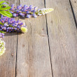 Stock Photo: Beautiful lupines on wooden background