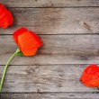 Red poppy on wooden background — Stock Photo