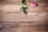 ローズの木製の背景 — ストック写真