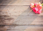 Rose on wooden background — Stock Photo