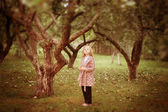 Girl in the apple orchard — Stock Photo