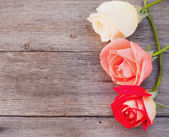 Rose on wooden background — Stockfoto