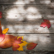 Autumn leaves over wooden background — Stock Photo #26292155