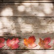 Autumn leaves over wooden background — Stock Photo #26292209