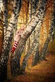 快乐的女孩在秋天的森林中 — 图库照片