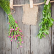 Medicine herbs and paper attach to rope with clothes pins on wooden background — Stock Photo #26608447
