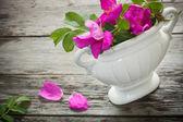 Blommor på trä bakgrund — Stockfoto